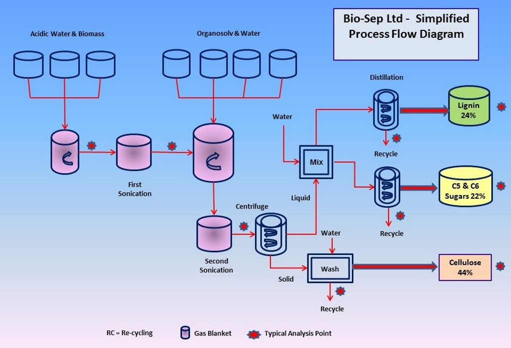 BSL Process Diagram